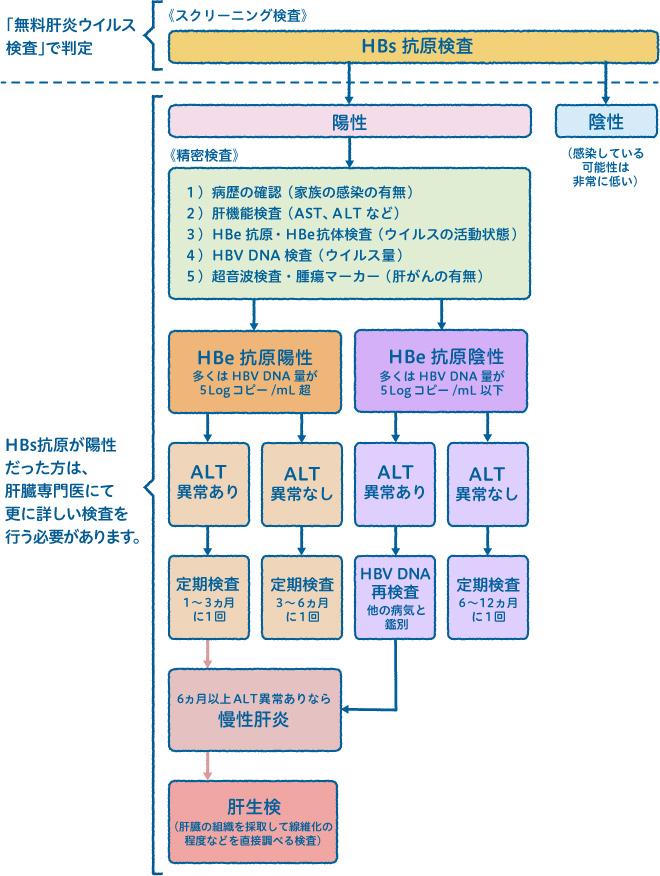B型肝炎の診断