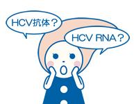 C型肝炎の検査について
